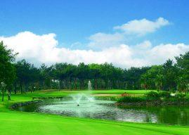 桃園高爾夫俱樂部&悅華大酒店