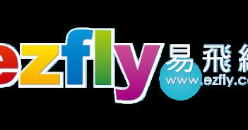 易飛網國際旅行社股份有限公司